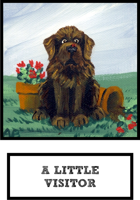 a-little-visitor-brown-newf-thumb.jpg