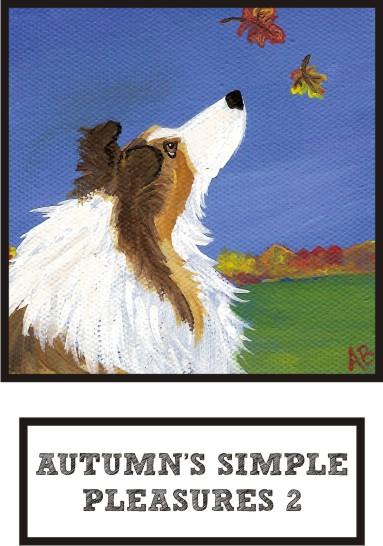 autumns-simple-pleasures-2-sable-sheltie-thumb.jpg