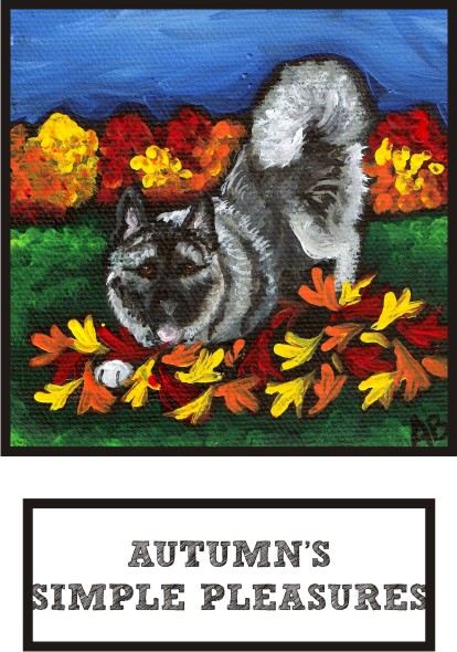 autumns-simple-pleasures-norwegian-elkhound-thumb.jpg