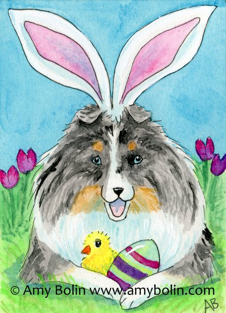 Blue Merle Sheltie Easter Sheltie Watercolor Painting by Amy Bolin