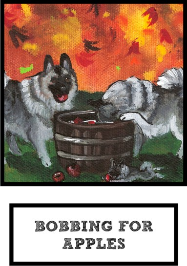 bobbing-for-apples-norwegian-elkhound-thumb.jpg