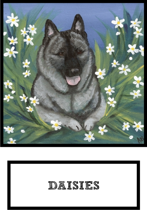 daisies-norwegian-elkhound-thumb.jpg