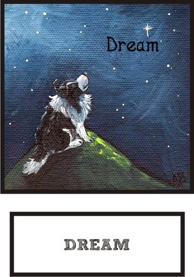 dream-bi-black-sheltie-thumb.jpg