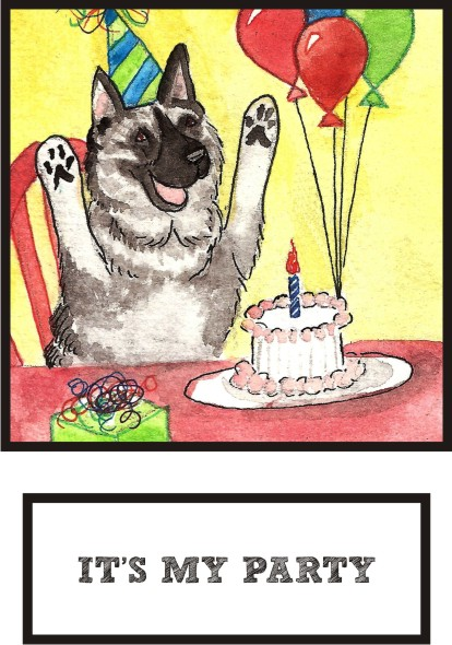 it-s-my-party-norwegian-elkhound-thumb.jpg