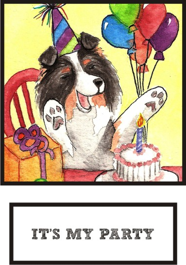 it-s-my-party-tri-color-sheltie-thumb.jpg