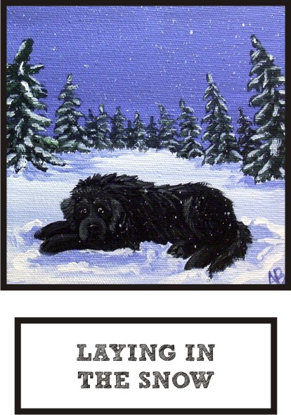 laying-in-the-snow-black-newf-thumb.jpg