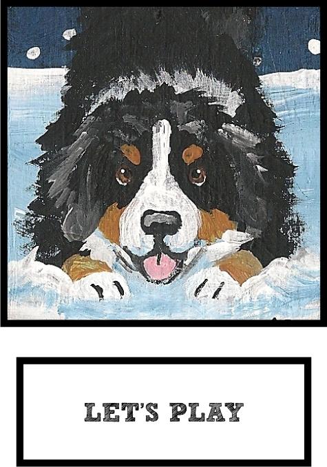 lets-play-bernese-mountain-dog-thumb.jpg