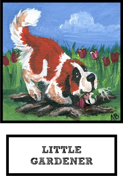 little-gardener-saint-bernard-thumb.jpg