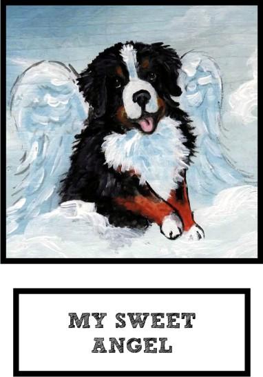 my-sweet-angel-bernese-mountain-dog-thumb.jpg