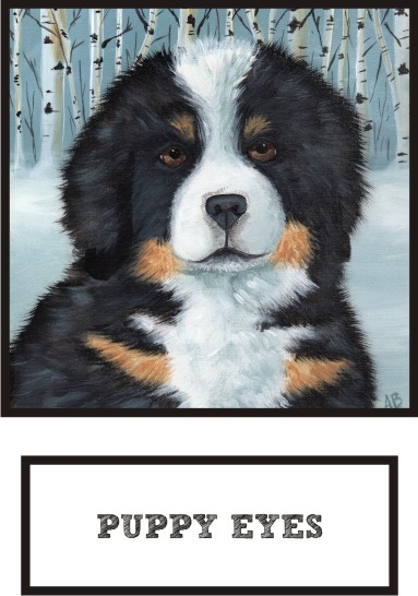 puppy-eyes-bernese-mountain-dog-thumb.jpg
