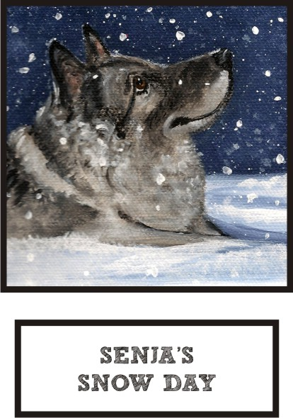 senja-s-snow-day-norwegian-elkhound-thumb.jpg