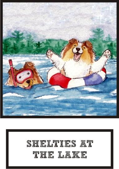 shelties-at-the-lake-sable-sheltie-thumb.jpg