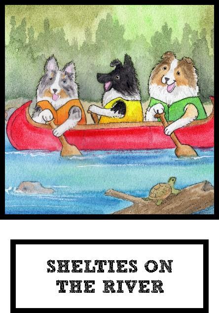 shelties-on-the-river-thumb.jpg