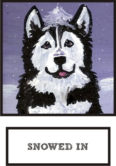 snowed-in-alaskan-malamute-thumb.jpg