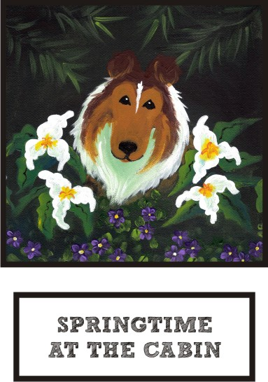 springtime-at-the-cabin-sable-sheltie-thumb.jpg