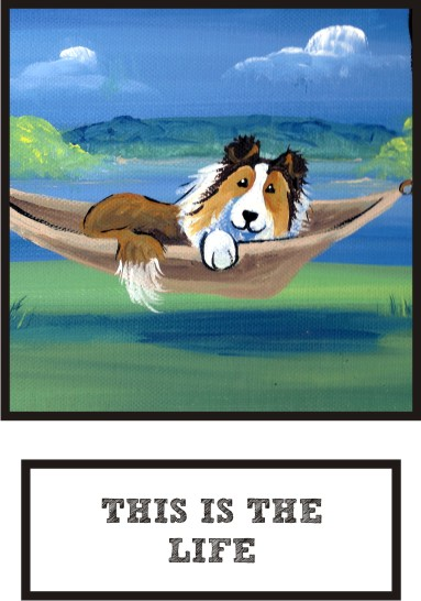 this-is-the-life-sable-sheltie-thumb.jpg