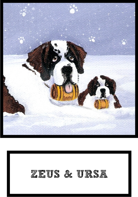 zeus-and-ursa-saint-bernard-thumb.jpg